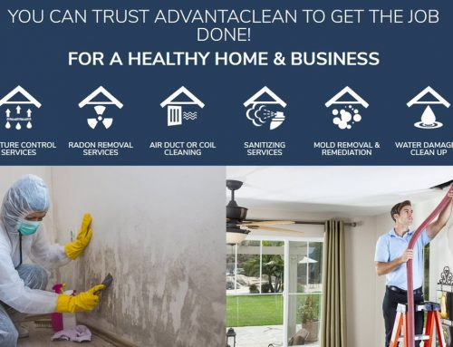 Fifteen Reasons Why AdvantaClean is a Top Franchise